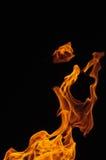 Flamma med svart bakgrund Royaltyfria Bilder