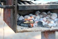 Flamma och galler fotografering för bildbyråer