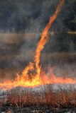 flammabedragare Royaltyfri Bild