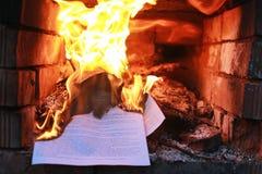 Flammabrand i ugnen royaltyfri bild