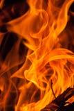 Flammadropp för Wood brand Arkivbilder