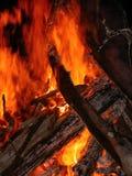 flammande campfire Arkivfoto