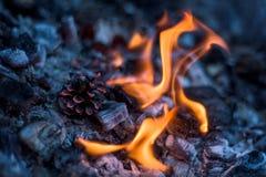 Flammande kol för detaljer arkivbild