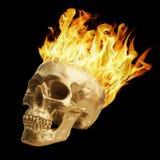 flammande skalle Arkivfoto