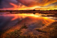 flammande sky Royaltyfri Bild