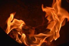 Flammar eller avfyrar royaltyfria bilder