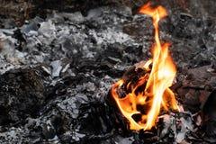 Flamme d'incinération des déchets photo libre de droits