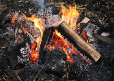 Flamme d'un feu, allumée en plein air Photo stock
