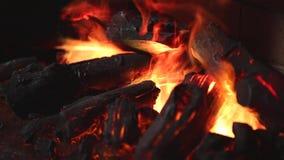 Flamme de cheminée électronique banque de vidéos