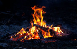 Flamme de feu de camp Photo stock