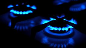Flamme de fourneau de brûleur à gaz pour la cuisson banque de vidéos