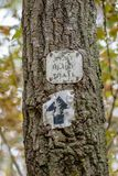flamme de traînée de forêt clouée à l'arbre images libres de droits