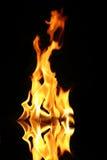 Flamme des Feuers Stockfoto
