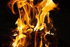 Flamme des Feuers auf einer dunklen Nacht stockfotografie