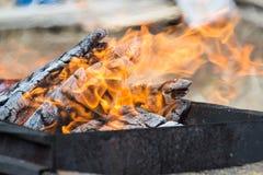 Flamme des Feuers Brennendes Brennholz auf dem Grill für Kebab Picknick stockbilder