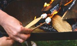Flamme gegrillt und Holz, das im Feuer und in den Stöcken mit Eibischen auf Feuer brennt Lizenzfreie Stockbilder