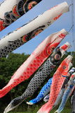 Flamme japonaise de carpe Image libre de droits