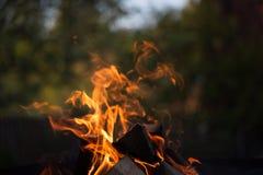 Flamme lumineuse de feu defocused images stock