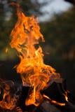 Flamme lumineuse de feu defocused photos stock