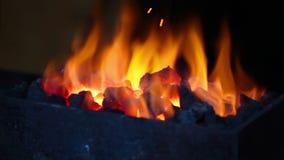 Flamme lumineuse des brûlures du feu banque de vidéos