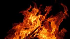 Flamme orange du feu de plan rapproché sur le fond noir banque de vidéos