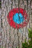 Flamme rouge et bleue sur la traînée photographie stock
