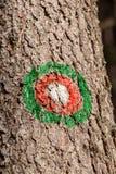 Flamme rouge verte sur la traînée image libre de droits