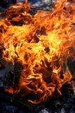 Flammen auf Holz Sommer-Feuer im im Freien stockfotos