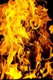 Flammen beleuchteten das Feuer und wärmten seine Wärme im kühlen Wetter Regeln der sicheren Züchtung des Feuers Stockbild