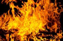 Flammen beleuchteten das Feuer und wärmten seine Wärme im kühlen Wetter Regeln der sicheren Züchtung des Feuers Lizenzfreies Stockbild