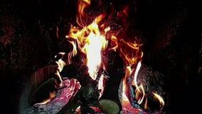 Flammen des wirklichen Feuers brennen Bewegung mit Niederlassungen des Holzes, Kamin in der Zeitlupe, auf Schwarzem stock video