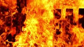 Flammen eines Feuers Langsame Bewegung stock video footage