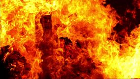 Flammen eines Feuers Langsame Bewegung stock footage