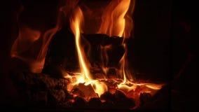 Flammen eines Kamins stock video