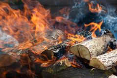 Flammen eines Lagerfeuerabschlusses oben Lizenzfreie Stockfotografie