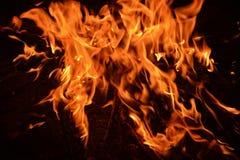 Flammen von einem Feuer auf einem schwarzen Hintergrund Lizenzfreie Stockbilder