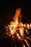 Flammen von einem Feuer auf einem schwarzen Hintergrund Stockbild