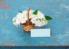 Flammenblumeblumen im Korb und im Papier Lizenzfreies Stockbild