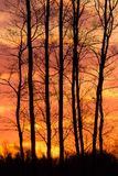 Flammender Sonnenuntergang