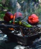 Flammenrauchpfeffer auf hibachi Grill draußen Lizenzfreie Stockfotografie