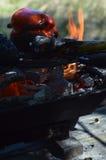 Flammenrauchpfeffer auf hibachi Grill draußen Lizenzfreies Stockfoto
