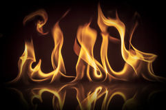 Flammes photo stock