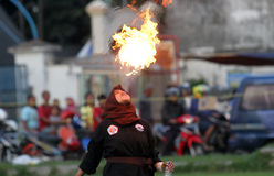 Flammes photographie stock libre de droits