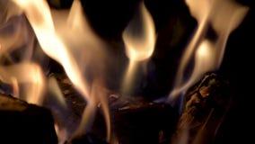 Flammes brûlantes la nuit Cheminée avec du bois brûlant Incendie sur un fond noir banque de vidéos