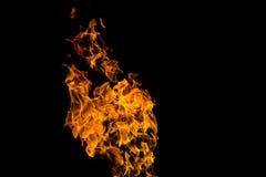 Flammes d'incendie sur le fond noir le feu sur le fond noir d'isolement Mod?les du feu photos libres de droits