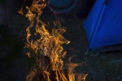 Flammes d'un feu brûlant le soir image stock