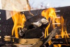 Flammes de BBQ sur Sunny Day Images libres de droits