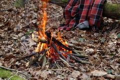 Flammes de feu de camp Photos stock