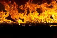 Flammes de flambage sur le fond noir image libre de droits