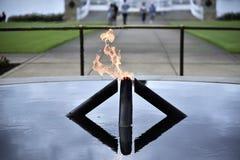 Flammes de héros Images stock
